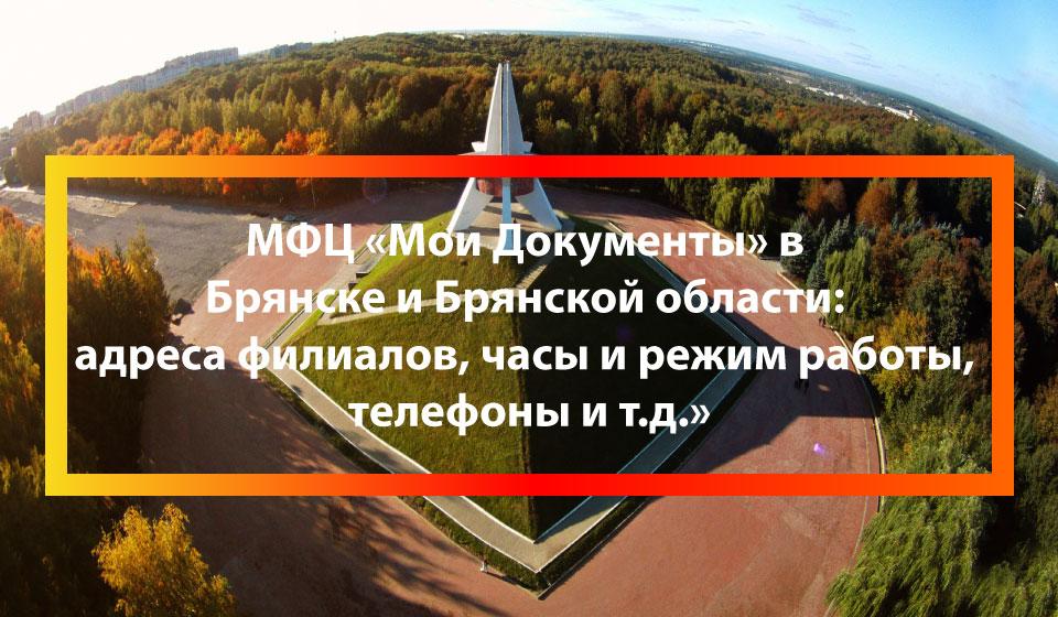 МФЦ Дубровка (поселок), Дубровский район