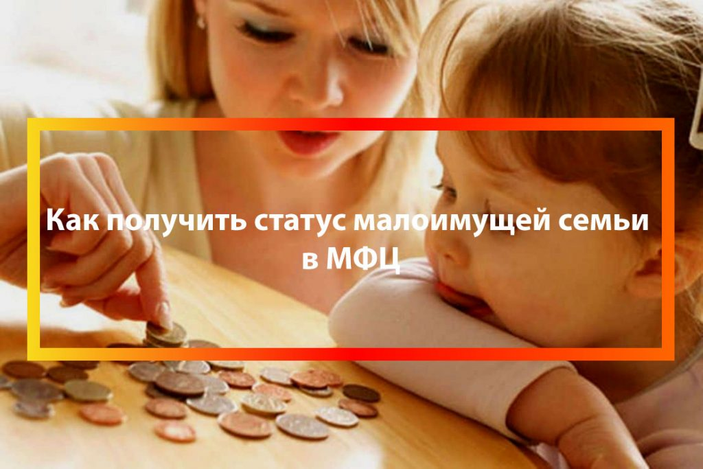 status-Статус малоимущей семьи через МФЦ-semi-cherez-mfc
