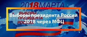 Выборы президента России 2018 через МФЦ
