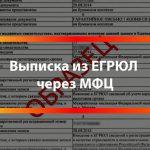 Выписка из ЕГРЮЛ в МФЦ: быстро, сроки и документы