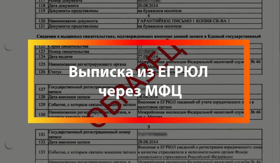 Выписка из ЕГРЮЛ через МФЦ